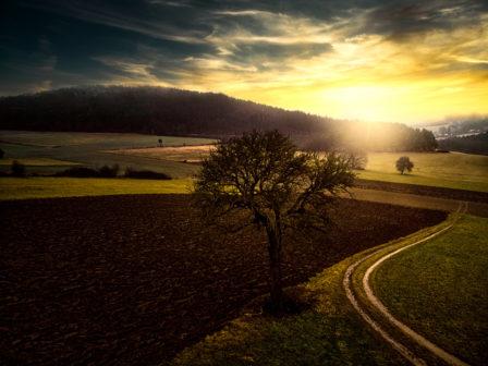 Bildmontage Sonnenuntergang Sittendorf